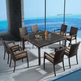 Popular Style Outdoor Cheap Price Garden Furniture Dining Set by 8-10person (YTA362-1&YTD020-3)