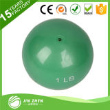 PVC Eco-Friendly Weight Exercise Ball Toning Ball