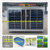 Animal Fodder Machine/Wheat Barley Sprouting Machine