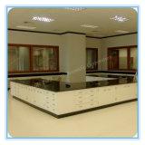 Glass Phenolic Resin Steel Lab Furniture