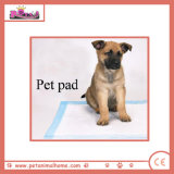 Disposable Pet Pads Eco-Friendly Print Dog