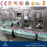 Complete Pop Can Milk Filling and Packing Machine/Line