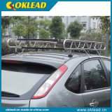New Style Best Selling Steel Car Roof Rack (RR111)