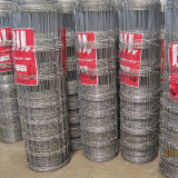 2.0mm-3mm Wire Fencing Mesh/Fixed Knot Field Fence