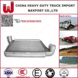 Aluminum Customized Sinotruk HOWO Intercooler Wg9725530020 (truck spare part)