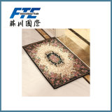 Wholesale Anti Slip Foot Carpet Floor Front Door Mats