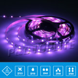 CE Approved SMD 5050 RGB Flexible LED Strip