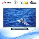 42-Inch LED TV C3300 E-LED TV/Smart LED TV for Optional