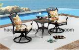 Outdoor /Rattan / Garden / Patio / Hotel Furniture Cast Aluminum Chair & Table Set (HS3190RC &HS 7060ET)