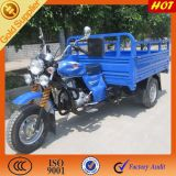 China Adults Delivery Tricycle for Cargo