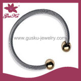 Fashion Stainless Steel Bangles for Sale (2015 Stbl-076)