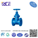 Custom Proportional Valve for Water