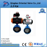Pn16 Handle Manual Wafer Center Butterfly Valve D71X-16, Different Size