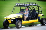Go Kart 1100CC Dune Buggy 4X4 with 4 Seater