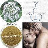 Sex Enhancer Powder Osthole 484-12-8 for Anti-Inflammation