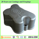 Aluminum Die Casting Parts for Engine (ADC-53)