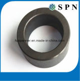 Permanent Ferrite Magnet Multipole Magnet Rings for Motor