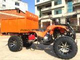 China Supply Farm ATV with Snow Tire Big Storage
