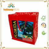 Large Capacity Custom Eco-Friendly PP Shopping Woven Bag with Zipper