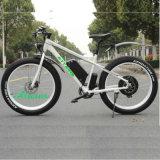 Mountain Snow Beach Motor Dirt Ce Electric Bike