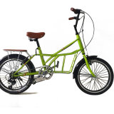New Model Colorful Bike Lady Bicycle (NB-001)