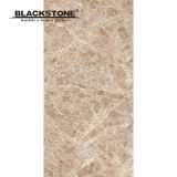 1200X600X4.8mm Rock Series Porcelain Polished Thin Floor Tile (BSLP120615)