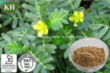 High Quality Tribulus Terrestris Extract Protodiosin 40%, Saponins