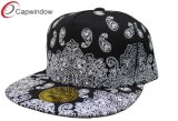 Custom Embroidery Hip Hop Baseball Cap (03009)