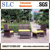 Attractive Sofa/Powder Coating Sofa/Antique Sectional Sofa (SC-B1003)