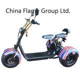 1000W Electric Chopper Bike with 60V/20ah/30ah