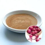 Onion Extract Allium Cepa Extractum Cepae Manufacture
