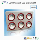Hot-Sale COB Uranus 6 LED Grow Light for Commercial Cultivation