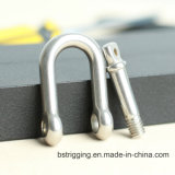 Stainless Steel D Shackle JIS Type for Connecting