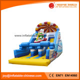 2017 Hot Summer Inflatable Water Slide Park with Snowman Surfing (T4-234)