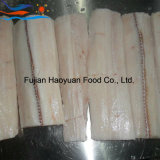 Shark Fillet with High Quality