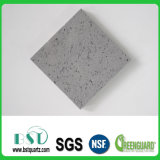 Stellar Grey Fleck Silica Polished Quartz Stone