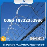 Competitive Price with Best Selling Concertina Razor Wire