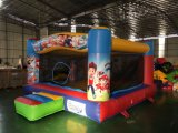 Various Types Inflatable Combo for Outdoor Playground