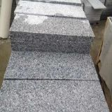 Polished G640 Grey Granite Stone Tile for Flooring/Paving/Stairs Step/Counter Tops