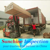 Container Loading Inspection Service/Factory Audit