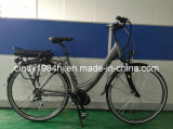 E Bike /Electric Bicycle / Electric Bike with Bafang Central Motor System Best for European Market (HJ-C02)