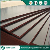 17mm/18mm Construction Grade Film Faced Plywood