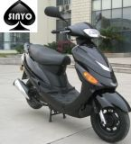 Classic Design Hot Sell Nice Scooter