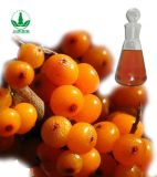 Seabuckthorn (fruit) Oil