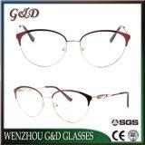 Fashion Popular Stainless Glasses Optical Frame Eyeglass Eyewear