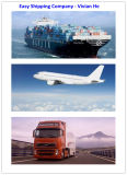 Consolidate From China to USA, Reliable Shipping Service