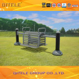 Porpular Outdoor Fitness Equipment (QTL-3004)