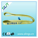 3t*5m Endless Polyester Webbing Sling Safety Factor 6: 1
