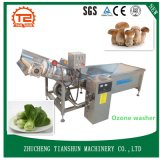 Cleaning Equipment for Fruit and Aquatic Products