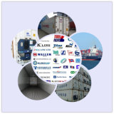 Professional Consolidate Shipping Services From China to Iceland